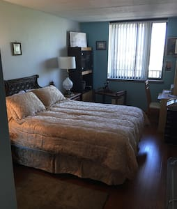 LARGE BEDROOM AND PRIVATE BATHROOM ..ASTORIA! - Astoria  - Appartamento