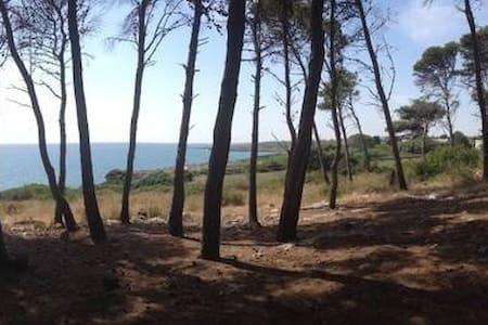 casa vacanze - Provincia di Taranto - House