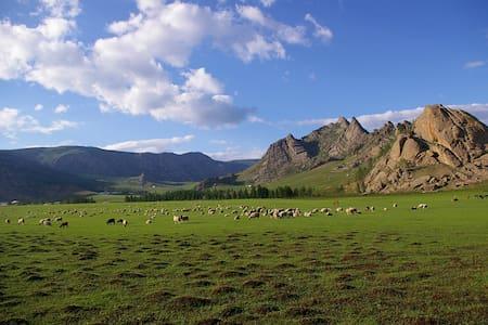Bayankhad Astronomical Tourist camp - Jurta