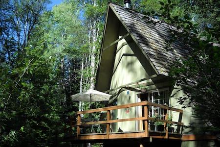 Getaway in the Woods of North Idaho - Piso Inteiro