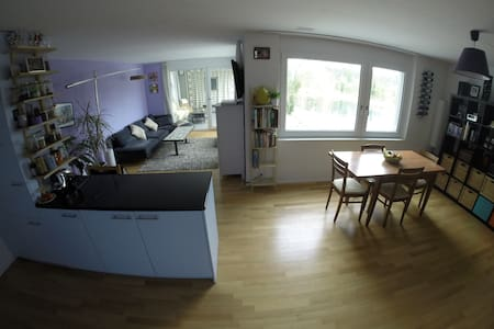 spacious 2 BR flat by river - Dietikon