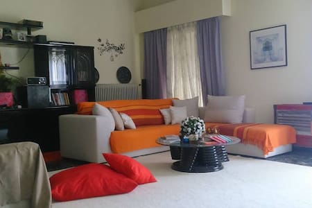 Spacious, cozy appartment, in central Sparta - Sparti - Appartement