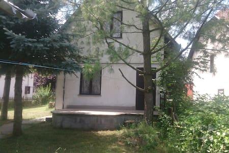 Balatonszemes nyaraló kiadó - House