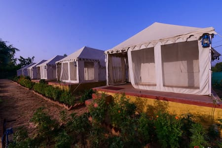 The Narayan Resort     Camping Resort - Pushkar - Zelt