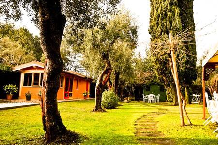 Casetta mediterranea a Forte dei Marmi - Provincia di Lucca - Bed & Breakfast