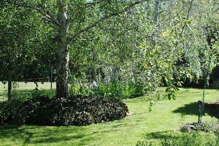 Retreat Garden Setting - Port Campbell