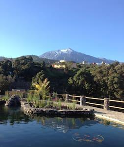 Urlaub im Paradies - Riendas Vivas - La Guancha