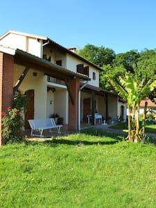 Villa très calme à 20 km de Toulouse - House