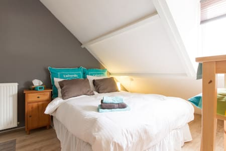Cosy, comfortable close to centre. - Haarlem