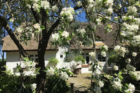 romantisches Reetdachhaus - Kluis - Rumah
