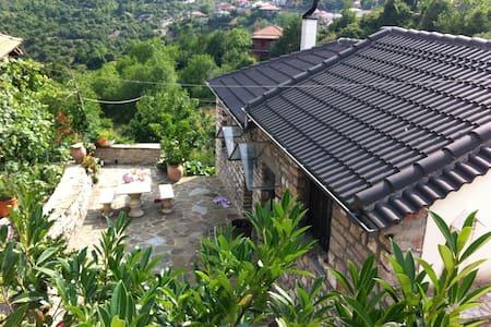 ALEXANDRAS GUEST HOUSE - Ampelochori
