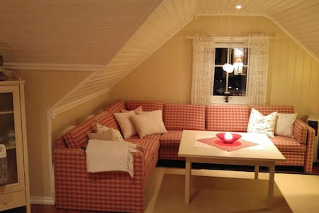 Privat room or house in Notodden :) - Loft