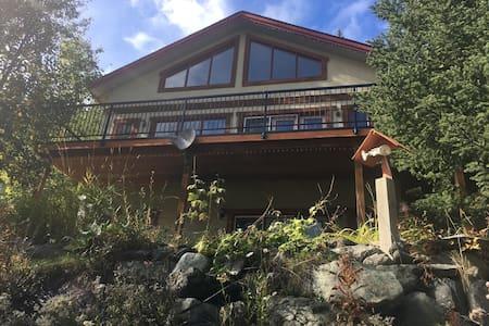 Nice open concept ski house - Casa