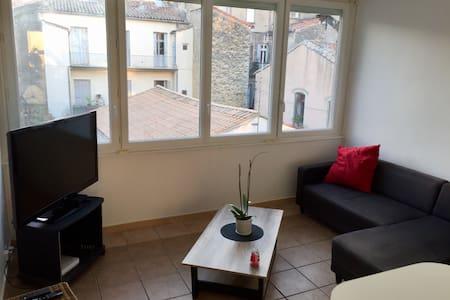 Appartement assez spacieux - Montpellier - Appartement