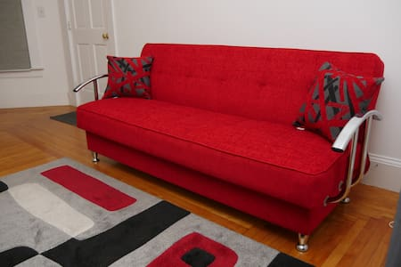 Large Private room with Comfy Pull up Sofa! - Apartment