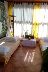 Chambre verrière dans la verdure - Bed & Breakfast