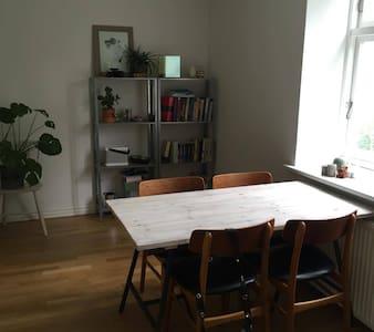 Cozy medium-sized apartment in the heart of Aarhus - Aarhus - Apartment