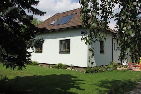 Large sunny apartment near mountain - Loft