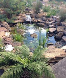 Katoomba Oasis - Katoomba - Hus