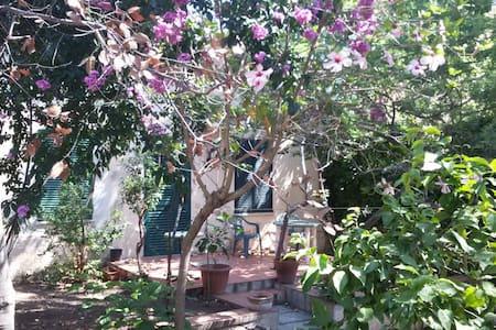 Natural Flowered Garden in Town Center - La Maddalena - Lejlighed