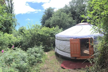 Yurt in the woods in the South Hams - Totnes - Iurta