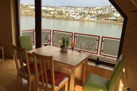 Homely apartment with view to rhine - Huoneisto