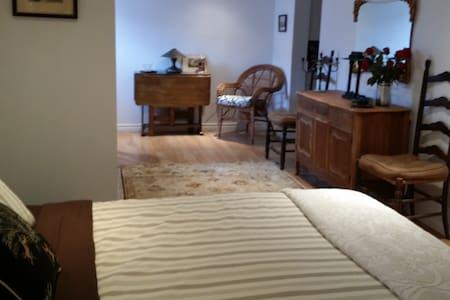 1 studio basement apartment - Lägenhet