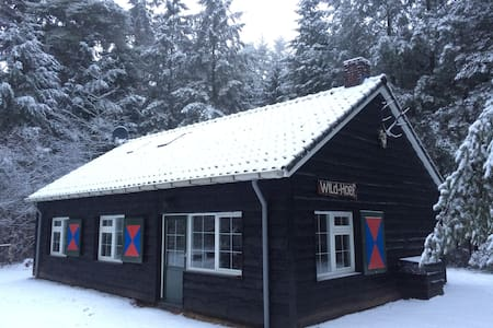 Romantic luxury cottage in forest - Vierhouten - Huis