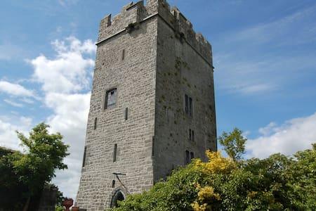 Ballyhannon Castle, Quin, Clare - Castell