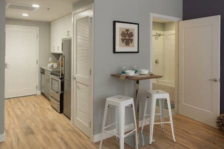 5 Star Luxury 1 BR APT Downtown (next to the Ritz) - Philadelphia - Apartment