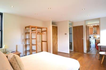 Spacious Central Studio Flat - London - Lejlighed