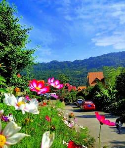 都江堰青城山旅游景区青城后山地中海风格三室两厅花园度假别墅家庭房 - Chengdu - Casa de camp