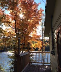 Lakefront Forested Cottage 3BDR - Harcourt - Cabin