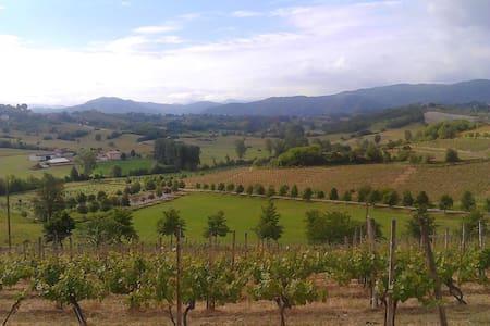 Enogastronomia nel Basso Monferrato - Appartement