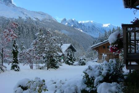 Charming studio, view Mont Blanc