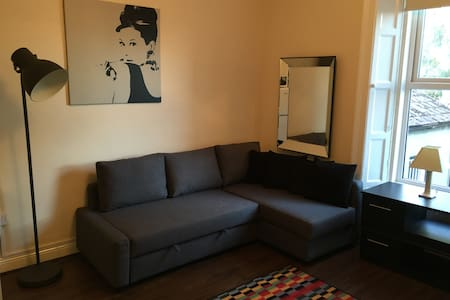COSY APARTMENT IN RATHMINES AREA OF DUBLIN CENTRE - Rathmines - Departamento