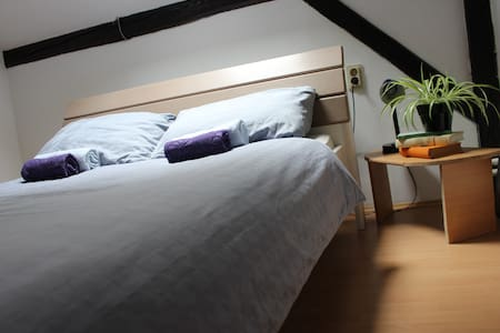 Private room for 1 near city centre - Byt