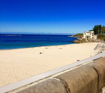Gorgeous Coogee Beach 2 mins - Coogee - Apartment