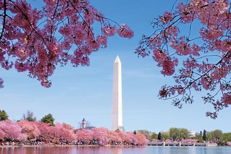 In DC & Budget Friendly. E - Washington - Maison