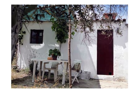 House in the country garden, Alentejo. - Nisa