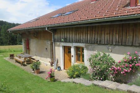 Chambre dans une ferme rénovée B&B - La Cluse-et-Mijoux - Bed & Breakfast