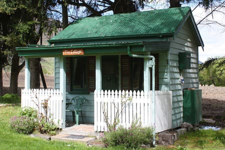 Historic Miners Cabin (Kingston Holiday Park) - Cabin