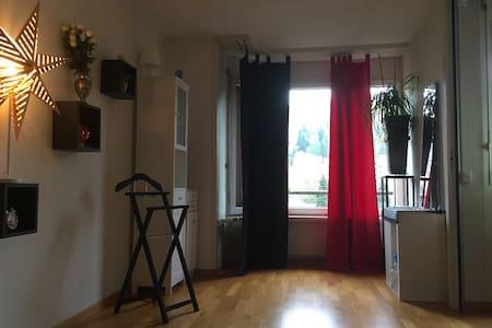 Zentrale Wohnung ,Schönes Zimmer - Apartment