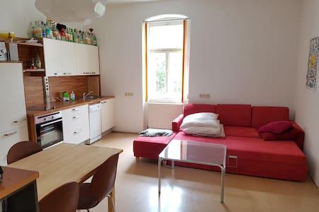 Gemütliche Wohnung im Herzen des Salzkammerguts - Apartment