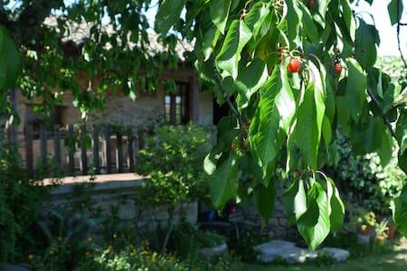 Casas do Feital - Casa do Jardim - Casa