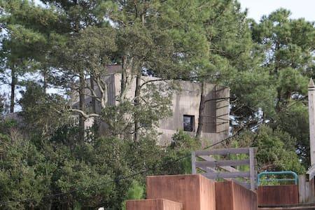 Maison d'architecte, plage, golf et foret a pied - Moliets-et-Maa - Villa