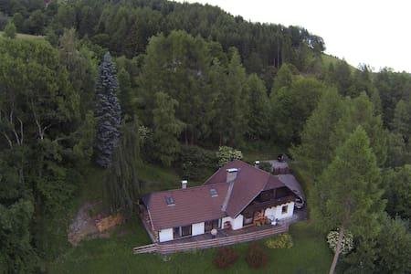 Urig gemütliches Haus am Berg - Ház