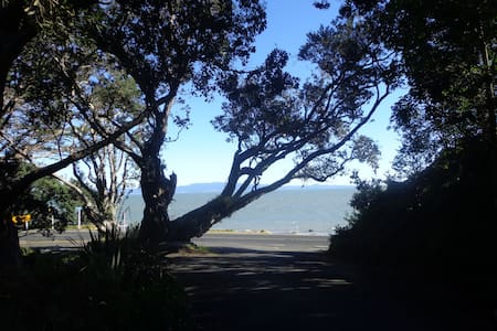 Birdwood, on the coromandel coast - Thames