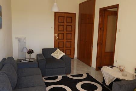 Elegant apartment near the beach - Nea Agchialos