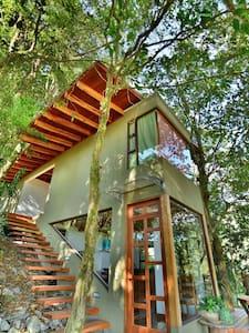 CASA FICUS, SANTA ELENA, MONTEVERDE - Monteverde - House
